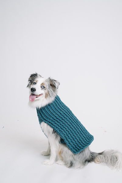 Bleu Dog Sweater